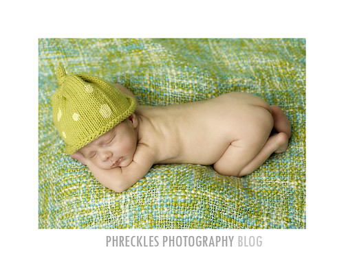 raleigh newborn photos