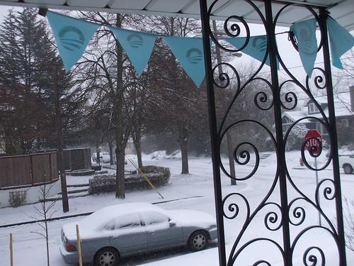 Snowy Sunday!