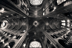 Notre Dame (Guillem Oliver) Tags: france catedral iglesia fisheye notre dame francia templo pars peleng ojodepez peleng8mmf35 gtico canoneos450d