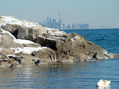 From a Distance (flipkeat) Tags: lake ontario canada interesting swan cntower mississauga mywinners dsch7 absolutelystunningscapes