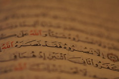 (thewhiteshadow009) Tags:  quran