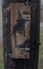 gutter (abandonview) Tags: trash found acrylic drawing tape gutter product blackhair acrylics 2x4 electricpole ballpointpen dumpter disolution abandonview lowonthepole