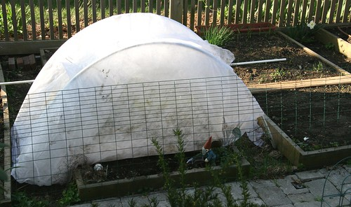 mini hoop house