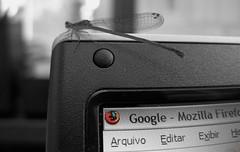 Dragonfly² - CutOut (Luiz Henrique Assunção) Tags: cutout google firefox nikon dragonfly coolpix 8800 licassuncao