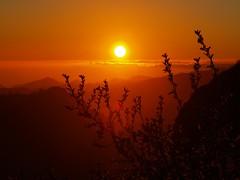 puesta  de  sol,sunset por isla de gran canaria