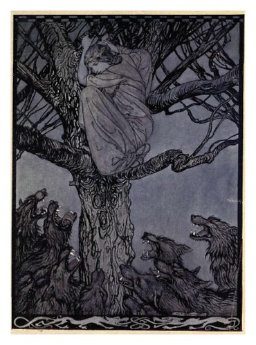 16-Irish fairy tales- Stephens, James- 1920