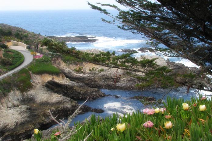 Hwy 1 coastal home