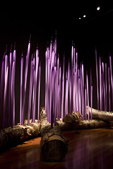 Chihuly glass sculpture (jgarber) Tags: sanfrancisco california 15fav sculpture glass deyoungmuseum dalechihuly