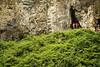 enjoy the vast green scenery (Alieh) Tags: green nature contrast persian iran persia gathering iranian ایران gorgan آبشار گرگان ایرانی کوه غار aliehs alieh ایرانیان پرشیا گردهمایی عالیه سعادتپور