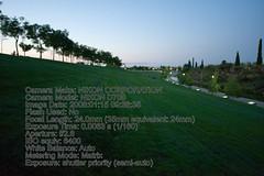 2905124581 ebb66843f9 m Análisis de la Nikon D700. Fotos y conclusiones
