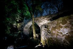 Underneath the arches (gms) Tags: uk bridge dark scotland angus flash mad hermitage dunkeld strobist strobism markhowellsmead