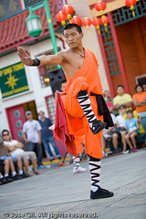 Shaolin Kung Fu 14 (Mormegil) Tags: pose demo chinatown fighter martialart buddhist chinese monk martialarts demonstration kungfu warrior balance warriors form wushu shaolin moonfestival gungfu martialartist shaolinwarriorsofchinatown