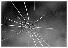 cracked (Jacqueline Clowting) Tags: glass cracked raam ruit