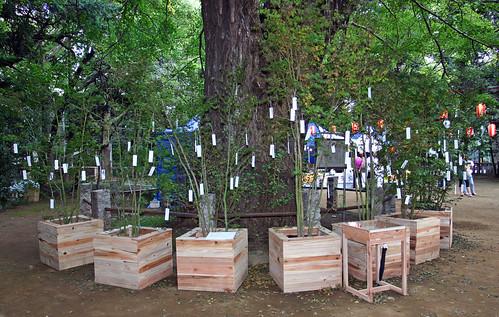 """Wish Tree for peace"" by Yoko Ono - 8"