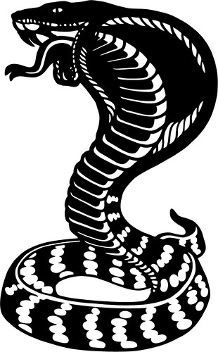 Branding Iron - Cobra Snake Image