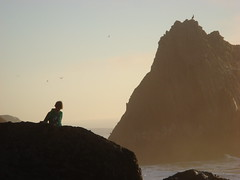 MartinsBeach_2007-203 (Martins Beach, California, United States) Photo