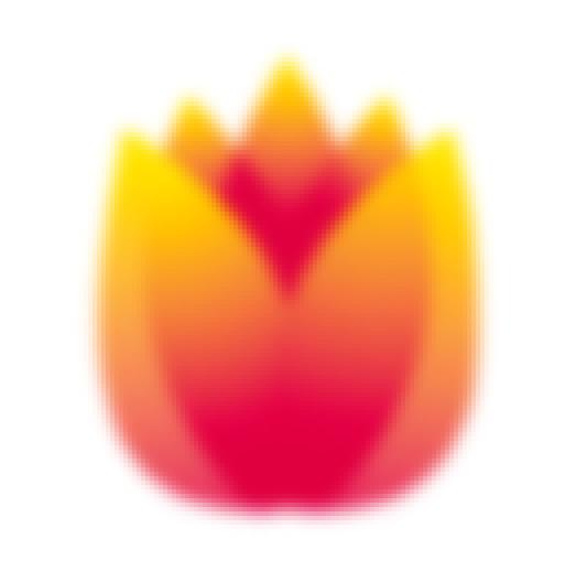 Holim logo
