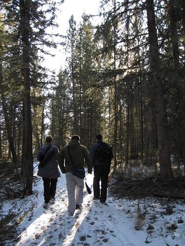 montana - hike