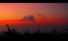 Nature's music ... (juntos ( MOSTLY OFF)) Tags: sunset music nature sensational magical goldenhour tob gbr peopleschoice firstquality sunsettime justonelook photographia top20sunset flickrsbest soulscapes mywinners abigfave colorphotoaward blueribbonaward crystalawards flickrshearts brillianteyejewels empyrianelite theperfectphotographer goldstaraward spiritofphotography multimegashot yrpreferredpictures stunningplanetearth extraordinaryphotography worldartgallery justproject saariysqualitypictures novavitagroup perceptiongroup thedantescircle oraclex25 imagesforthelittleprince yrpreferredphotos phvalue50 obq50 panoramicaphotography 30favenature thesegretgarden50