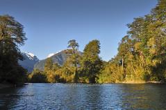 Rio Puelo - Las Hualas (Patagonia - Chile) (Noelegroj (5 Million views.Thank you all!!)) Tags: chile travel viaje patagonia naturaleza nature rio forest river landscape lakedistrict paisaje bosques puelo regiondeloslagos riopuelo chileanpatagonia