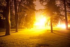 Aliens. (Jonathan Wagner) Tags: light ontario london night estate williams bright explosion shutter elsie perrin