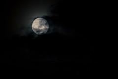 ceci n'est pas une lune (ph   pm) Tags: cloud moon white night dark nuvole nocturnal pop luna lunar notte notturno cecinestpas classicaliconography