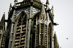 Gothic roost, Brighton (archidave) Tags: uk england detail tower church window saint st architecture paul brighton moody arch gloomy pigeon gothic victorian stpauls spire gargoyle belfry horror lead anglican pinnacle depressing roost tracery cofe churchofengland despondant russellplace gothichorror
