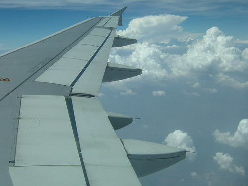 wing and clouds