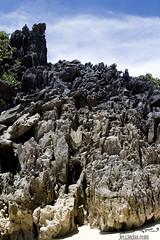 Neat rocks