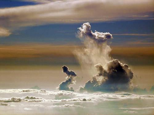Collapsing Cumulus