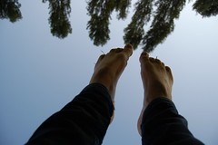 I miei Grattacieli (GioOnTheRoad) Tags: trees sex foot fuck amateur masochism fanculo feticism