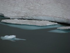 Frozen Lake - bergs