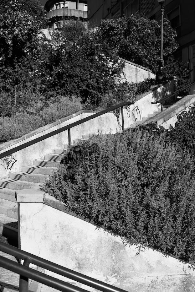 Escadas do Bairro dos Actores - Alameda Lisboa