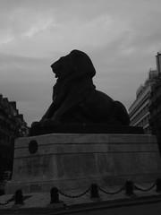Le Lion de Denfert