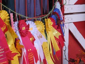 8_ribbons