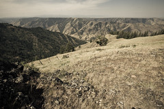 Hells Canyon (#43 of 80) (absencesix) Tags: travel usa oregon iso100 nationalpark unitedstates july canyon noflash northamerica 1020mm 2008 scrub locations locale 10mm hellscanyon manualmode canoneos30d camera:make=canon exif:make=canon exif:iso_speed=100 geo:state=oregon july292008 naturallocale summer2008travel sigmaexdg10204056 haslenstype hellscanyon0727292008 hellscanyonnationalpark hatpointpass selfrating3stars exif:focal_length=10mm 1100secatf16 geo:countrys=usa exif:lens=100200mm exif:model=canoneos30d camera:model=canoneos30d exif:aperture=16 subjectdistanceunknown geo:city=hellscanyon hellscanyonoregonusa