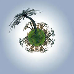 Palm's Planet (aZ-Saudi) Tags: world sky plant nature palms landscape design interesting dream wideangle super arabic oasis saudi arabia planet 1020mm circular ksa goldenglobe alhasa totalphoto goldenmix mathmap arabin favouritecapture arabs