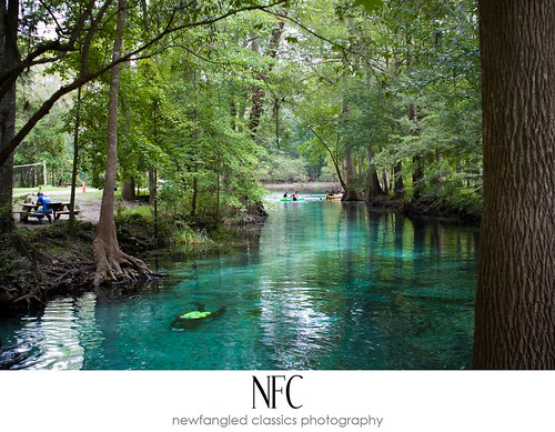 ginnie springs 7