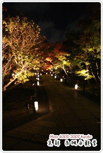 夜楓永觀堂-10