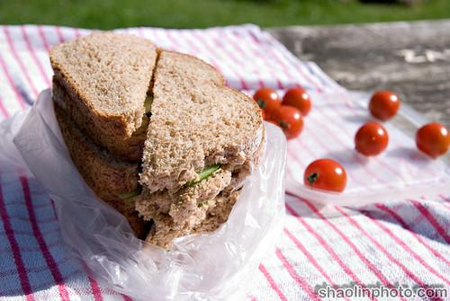 Homous Sandwich