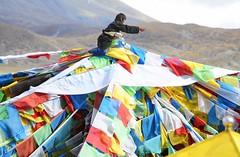 Tibet (reurinkjan) Tags: tibet 2008 prayerflag dala windhorse lungta changtang drokba storytellingphoto  janreurink damshungcounty storytellingphotography damgzung    passla     photostorydrapardrung