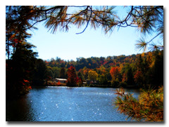 ~Autumn Mosaic~ (*~Tammy~*) Tags: autumn lake fall nature water colors georgia rabun tallulahgorgestatepark theperfectphotographer natureselegantshots