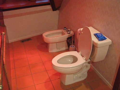 Toilet and Bidet.