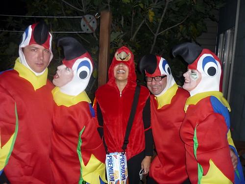 5 Parrots