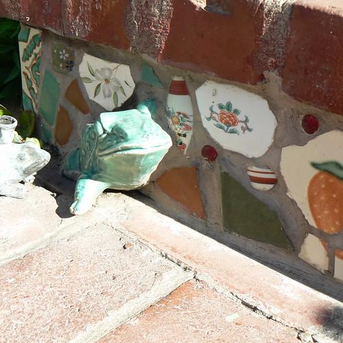 frog on steps
