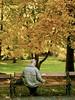 پشت به دنیا (maryam momeni) Tags: vienna bench oldman maryam stadtpark momeni