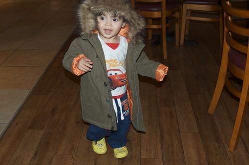 Benji's new coat