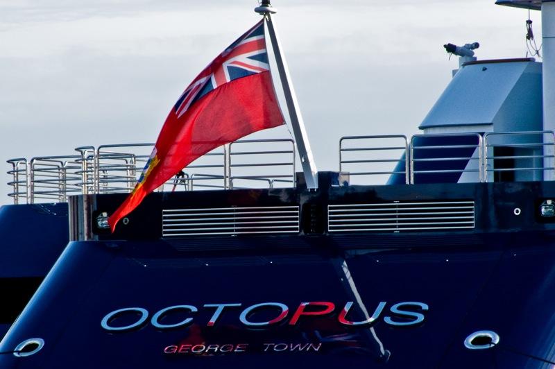Octopus Flag
