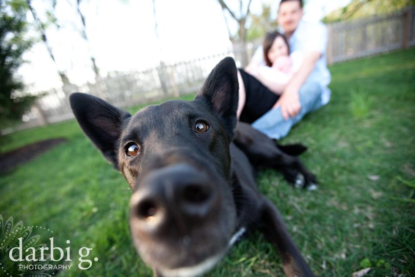 DarbiGPhotography-Sadie-KansasCity-babyphotography-129