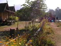 SANY0341 (marioambrosino) Tags: thailand mai chiang bai